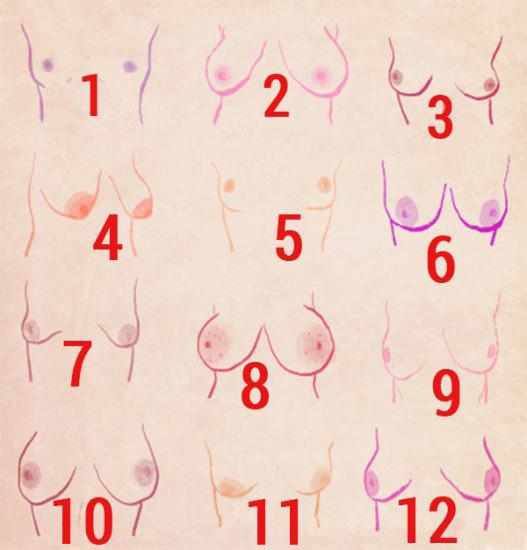 Тест: по форме груди можно определить характер женщины