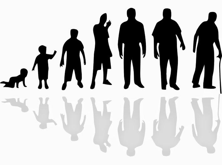 Каждые 7 лет - новый цикл жизни человека