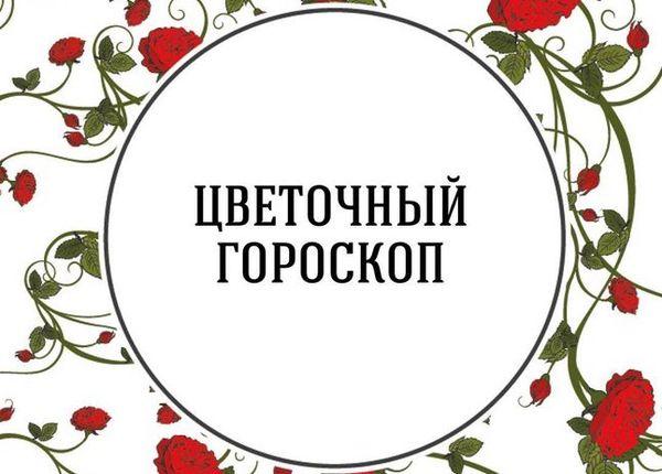 Цветочный гороскоп определит для каждого зодиакального знака цветок-талисман