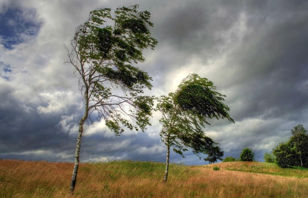 Заклинание на избавление от врагов читают в ветреную погоду